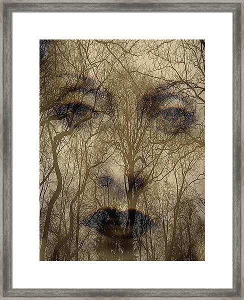 Asphalt - Portrait Of A Lady 2 Framed Print