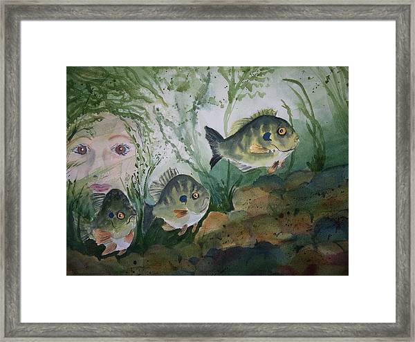 At The Fish Hatchery Framed Print
