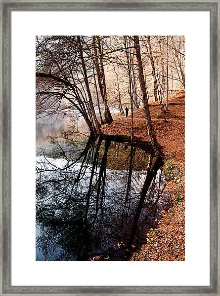 Autumn - 4 Framed Print