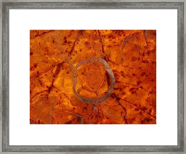 Autumn Circle Framed Print