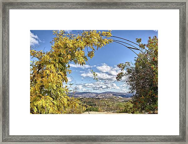 Autumn Clouds With Foliage Framed Print