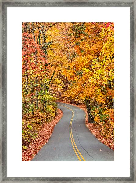 Autumn Drive Signal Mountain Framed Print