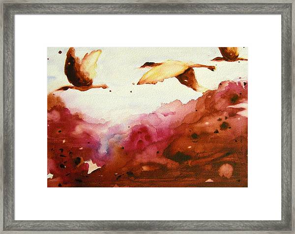 Autumn Flight Framed Print