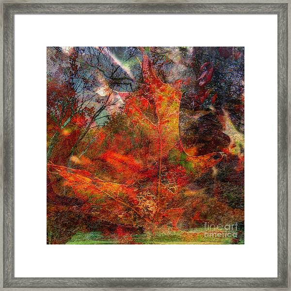 Autumn Fusion 2 Framed Print