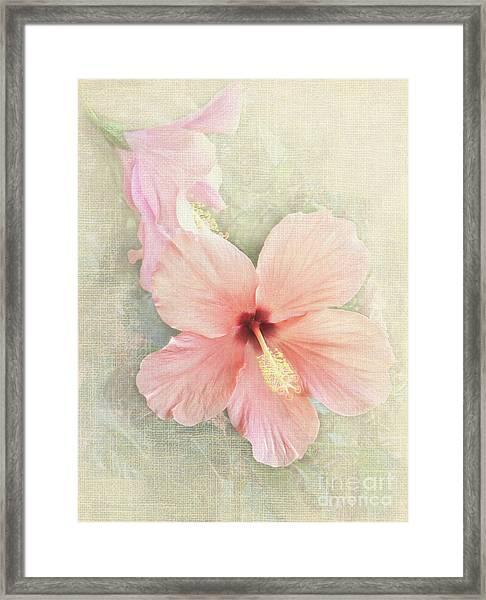 Autumn Hibiscus Framed Print