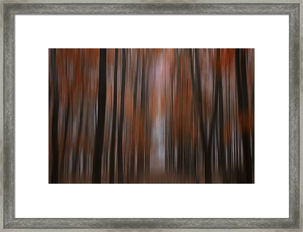 Autumn In The Midwest Framed Print