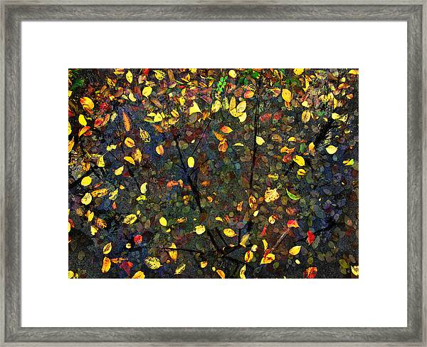 Autumn Reconstructed Framed Print