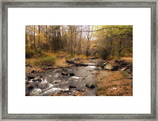 Babbling Brook In Autumn Framed Print