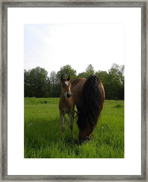 Babe With Mom Framed Print