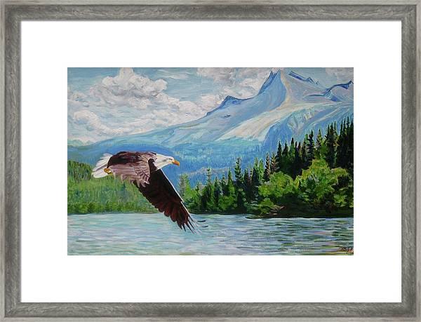 Bald Eagle Fishing Framed Print
