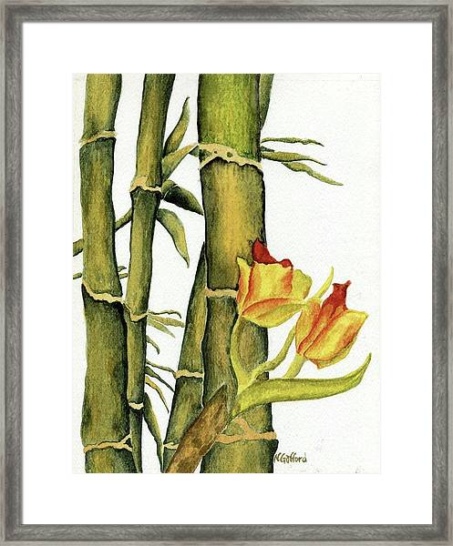 Bamboo Paradise Framed Print by Norma Gafford