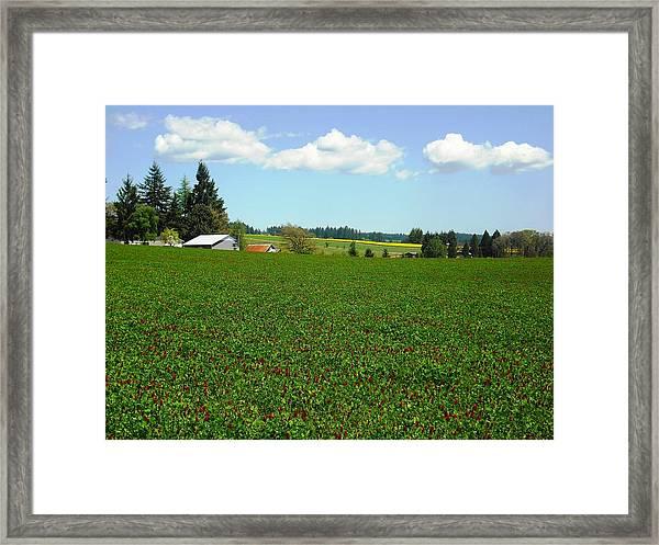 Banks Oregon Framed Print
