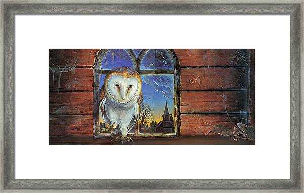 Barn Owls Finds A Home Framed Print