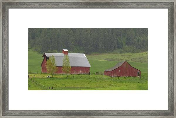 Barns Of The Palouse 5 Framed Print by Tony and Kristi Middleton