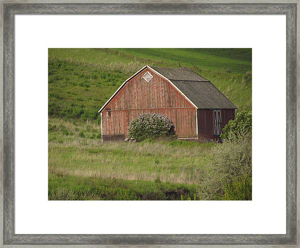 Barns Of The Palouse 6 Framed Print by Tony and Kristi Middleton