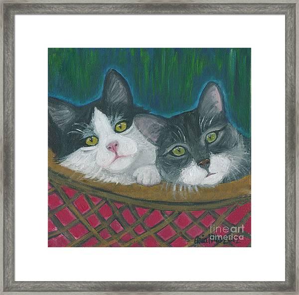 Basket Of Kitties Framed Print