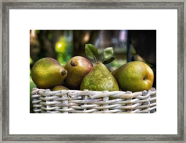 Basket Of Pears Framed Print