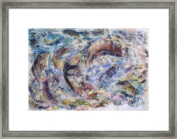 Bass Collage  Framed Print