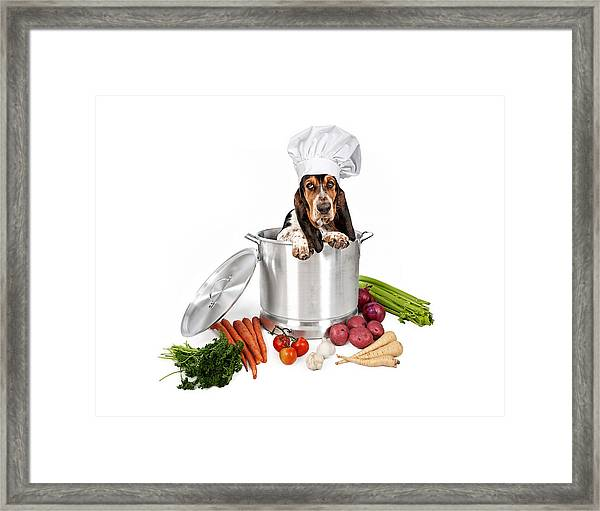 Basset Hound Dog In Big Cooking Pot Framed Print