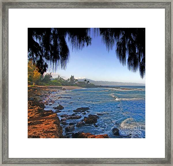 Beach On North Shore Of Oahu Framed Print