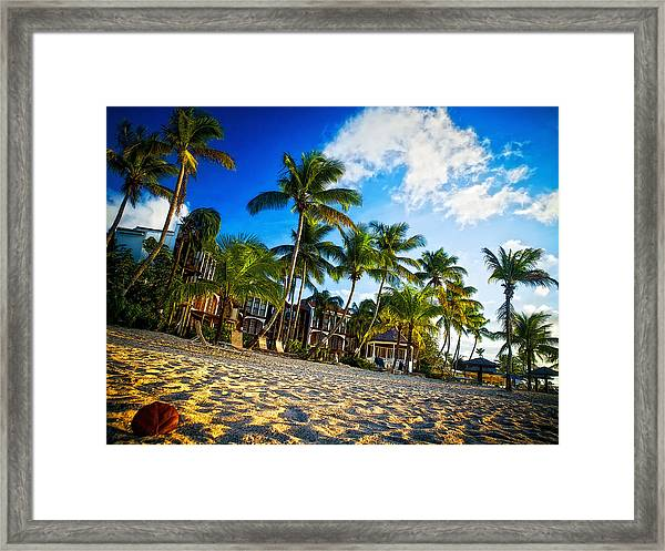Beach Rendezvous Framed Print