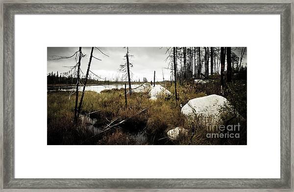 Beaver Pond Framed Print