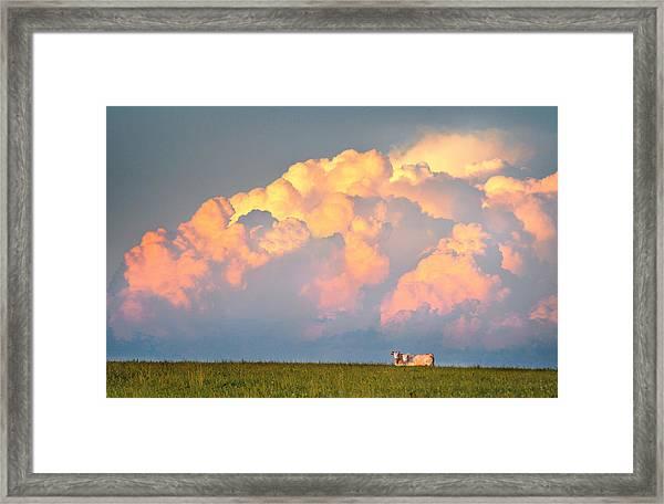 Beefy Thunder Framed Print