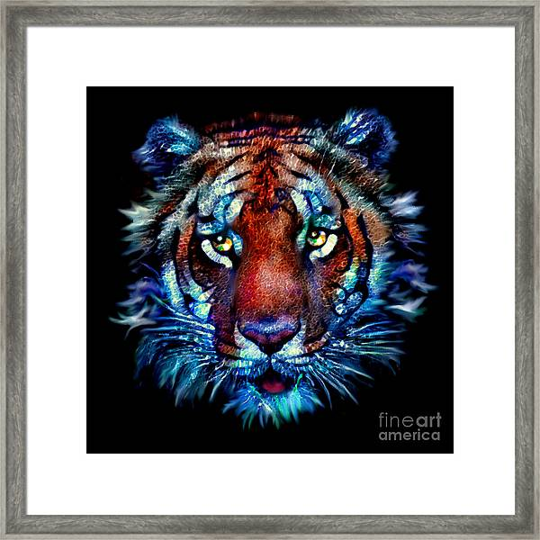 Bengal Tiger Portrait Framed Print