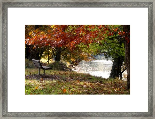 Best Seat On The Bank Framed Print by Darlene Bell