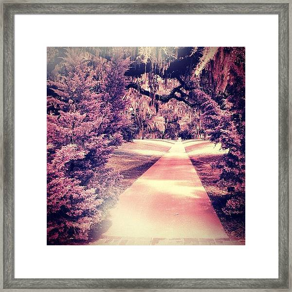 Beyond The Crossroads Framed Print