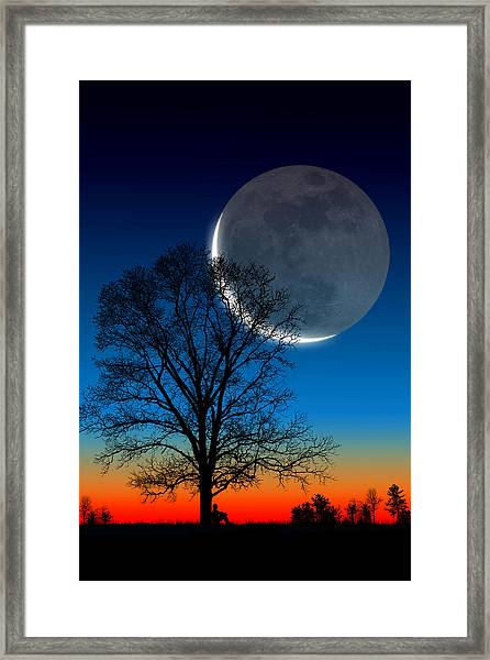 Big Dreams Framed Print