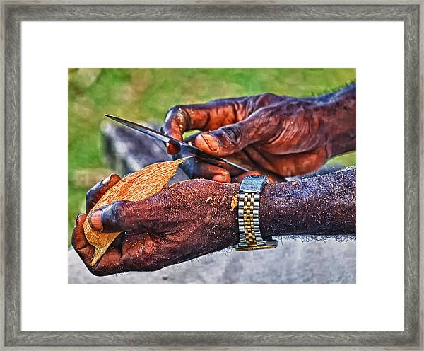 Bird Carver Framed Print