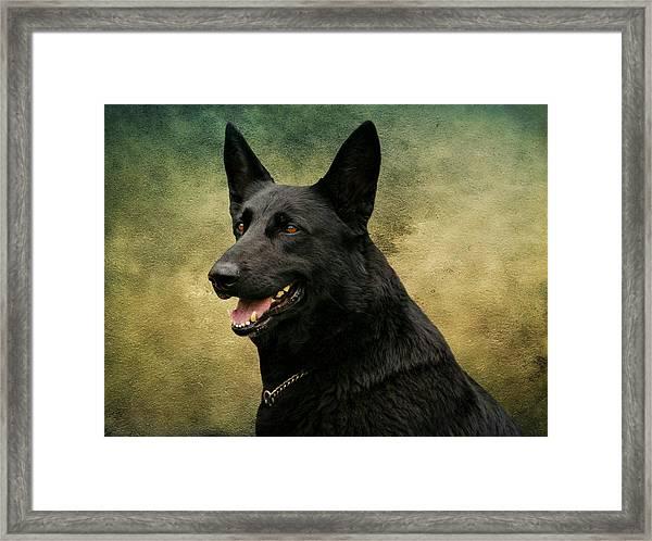 Black German Shepherd Dog IIi Framed Print