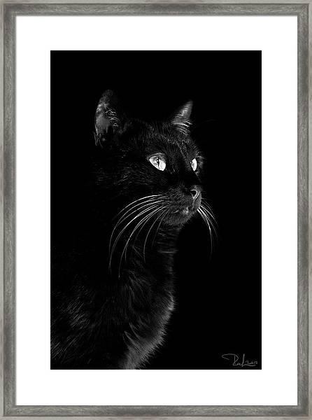 Black Portrait Framed Print
