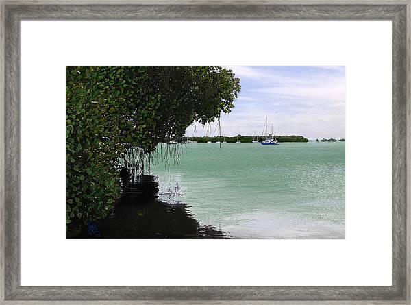 Blue Sailboat Framed Print