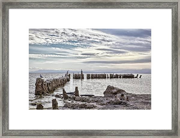 Bombay Beach Salton Sea 2 Framed Print