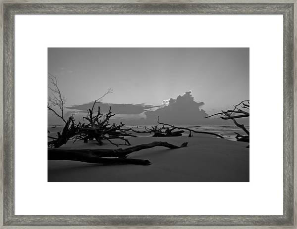 Framed Print featuring the photograph Bone Yard by Francis Trudeau