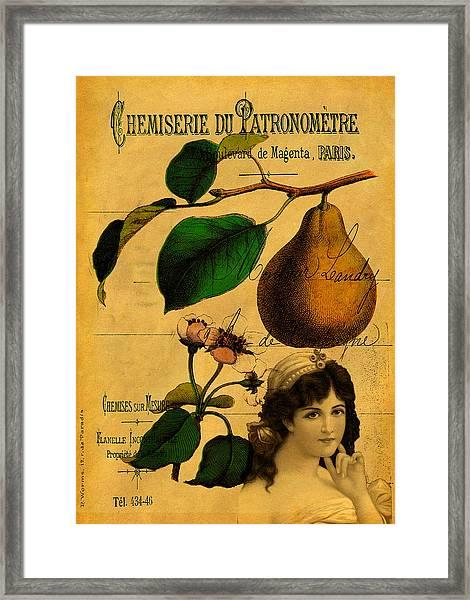 Botanical Fruit Framed Print