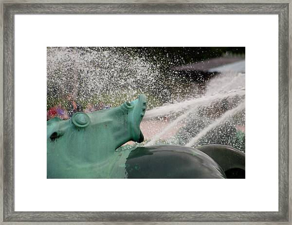 Buckingham Fountain Sea Horse Framed Print by Benjamin Clark