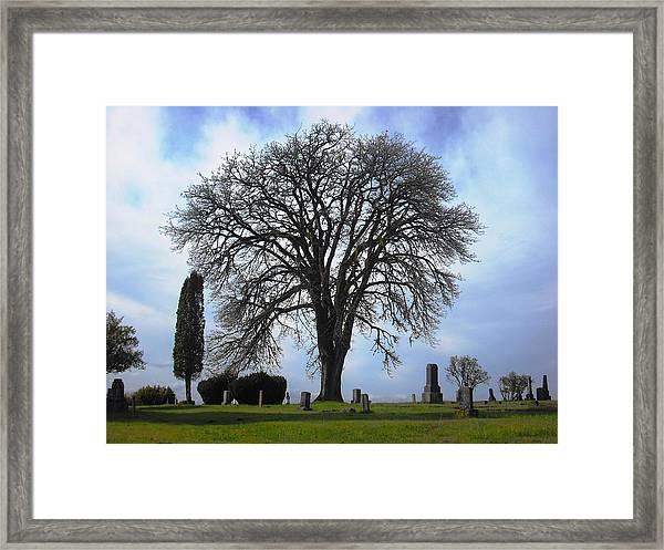 Buena Vista Cemetery Port Gamble Framed Print