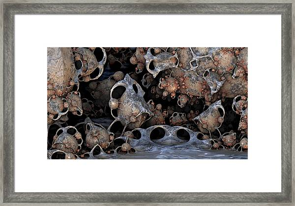 Bug Art Framed Print