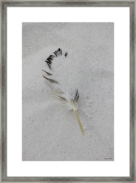 Buried Feather Framed Print