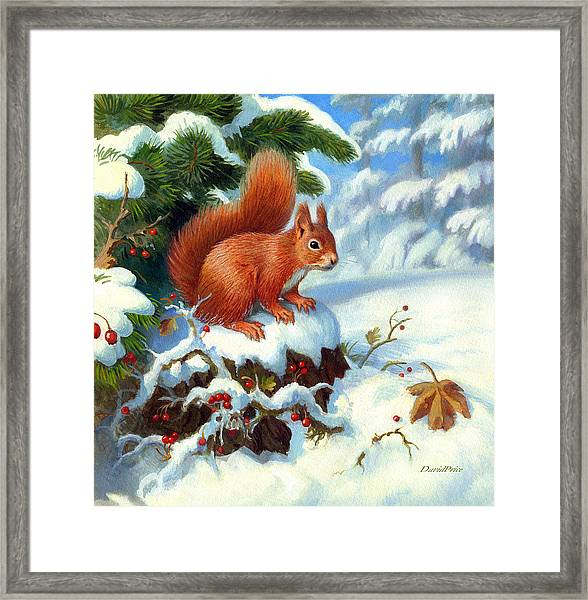 'buried Treasure' Framed Print by David Price