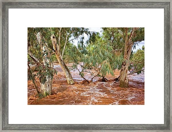 Bush Flood Framed Print