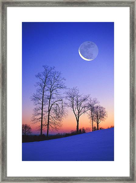 Busted Limb Framed Print