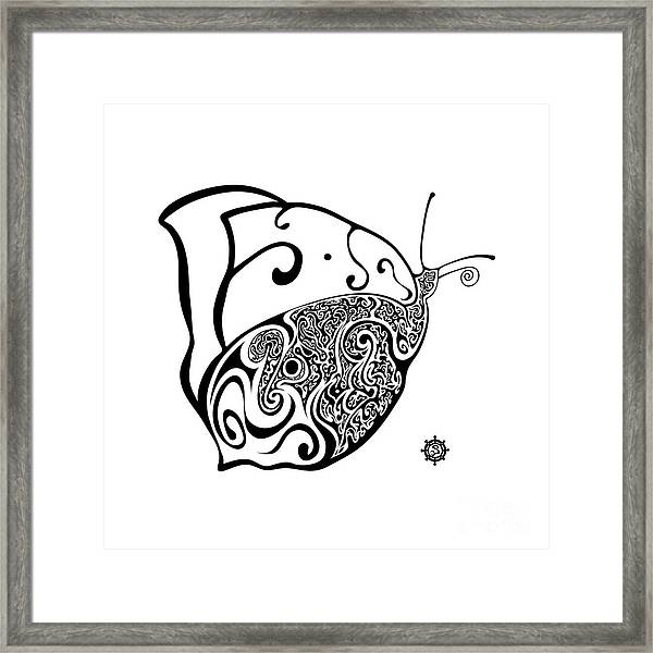 Butterfly Framed Print by Santi Goma Rodriguez