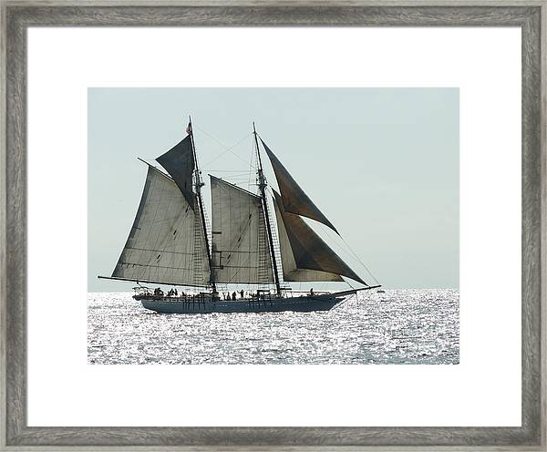 California Dreaming 2 Framed Print