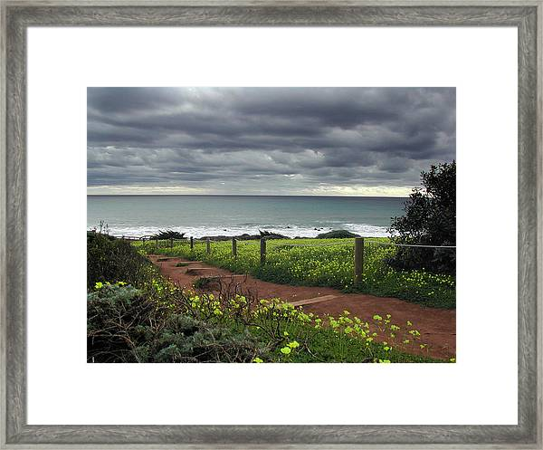 Cambria Trail Framed Print