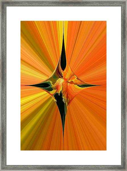Cana Lily In Hyperdrive Framed Print