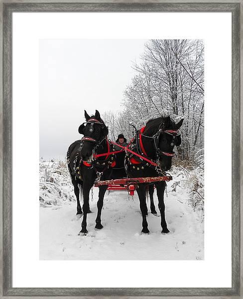 Canadian Team In A Winter Wonderland Framed Print